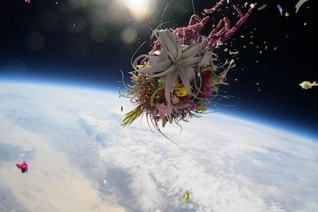 Web_flower02